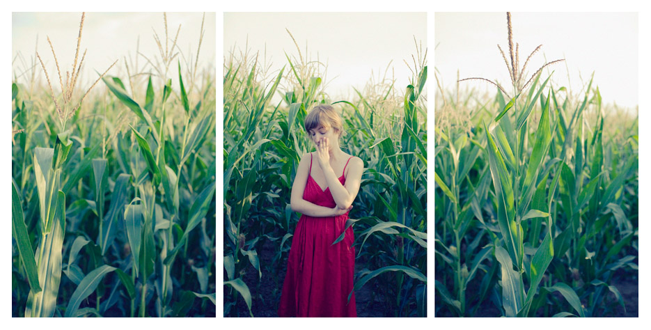 Julie - Cornfield again Triptych by Tom Spianti
